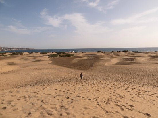 IFA Continental Hotel: dune maspalomas