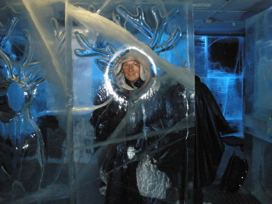 Nordic C Hotel:                   ice bar