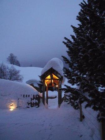 Hotel Chalet Alpage:                   joli