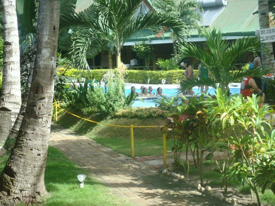 Dumaluan Beach Resort:                   This is taken from Room B1