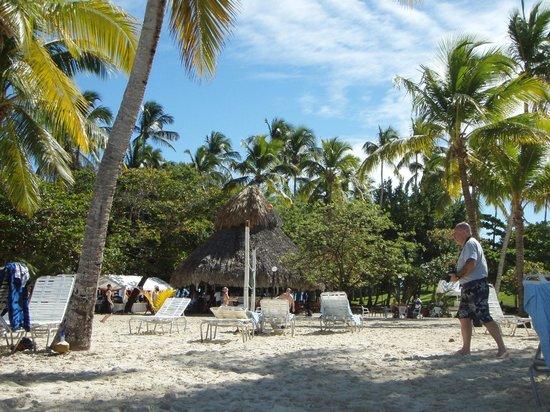 Cayo Levantado (Bacardi Island) :                   Be calm with a palm