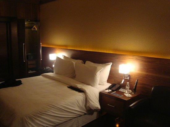 新德里艾美酒店照片