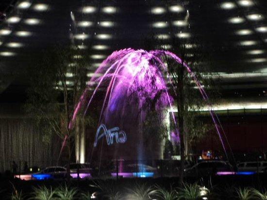 ARIA Resort & Casino:                   Ingresso Aria