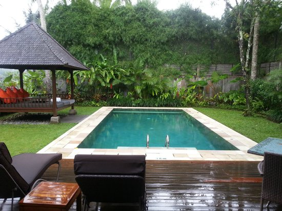 The Samaya Bali Ubud:                   villa pool
