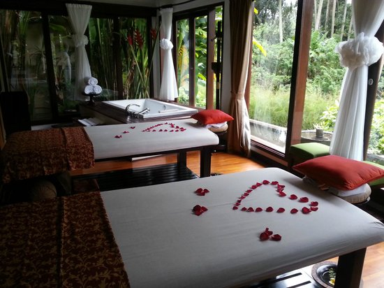 The Samaya Bali Ubud:                   #5 spa room