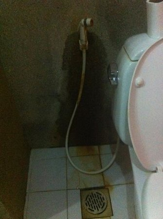 Siem Reap Temple Villa:                   bathroom
