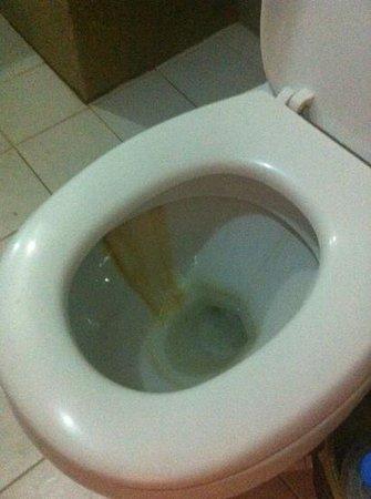 Siem Reap Temple Villa:                   toilet