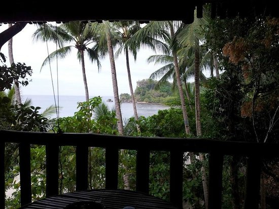 Cove Sands Beach Resort:                   View from our bungalow towards the ocean.