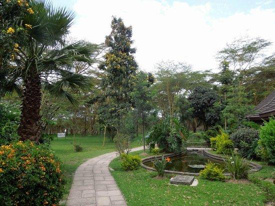 Lake Naivasha Simba Lodge: Gardens