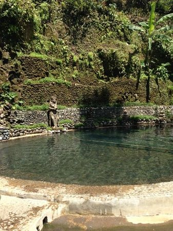 Hotel Tjampuhan & Spa:                   the spring pool