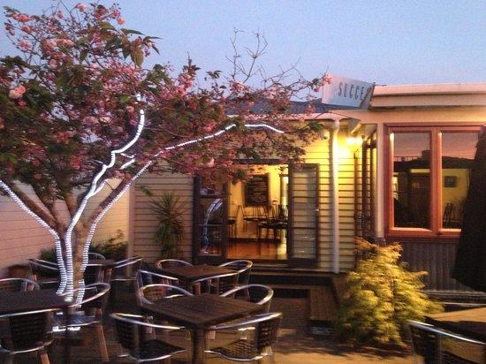 Success Cafe:                   Evening