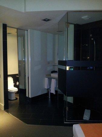 روم ميت أليسيا:                   baño-habitacion                 