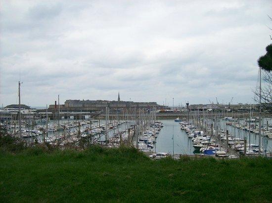 Albizia :                   vue sur le port des Sablons