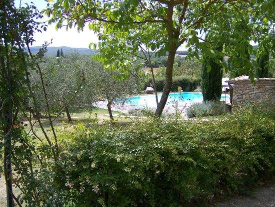 Tenuta di Corsano:                   Giardino e vista piscina