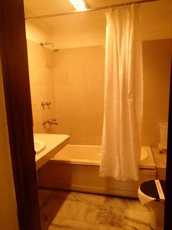 Hotel Ajanta: bath