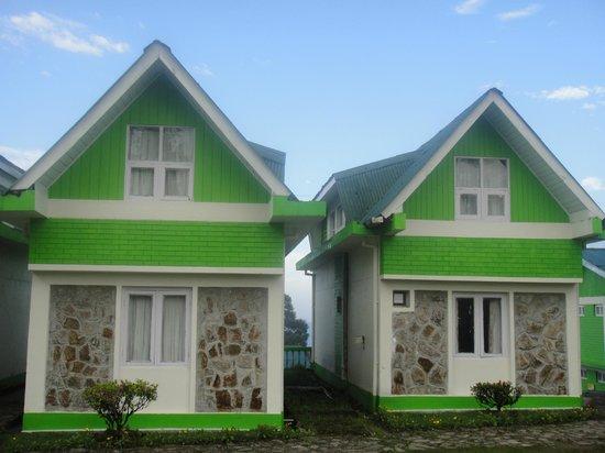 Sterling Darjeeling: The Duplex Cottages