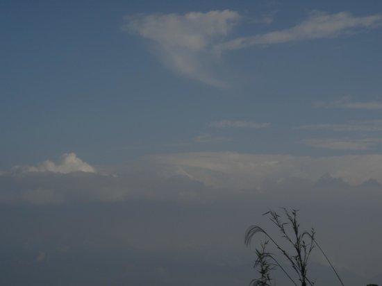 Sterling Darjeeling: View