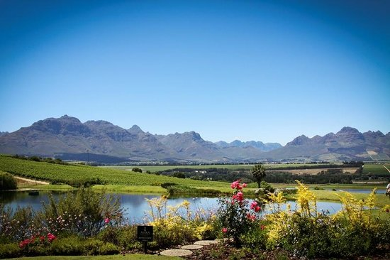 Photo of Asara Wine Estate & Hotel Stellenbosch