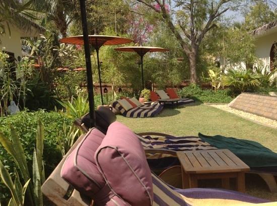 Blue Bird Hotel :                   poolside