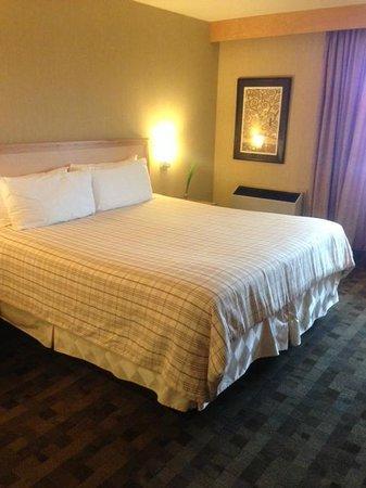 Ambassador Hotel & Conference Centre:                   king bed