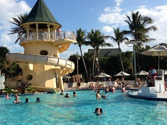 Disney's Vero Beach Resort:                                     pool perfection