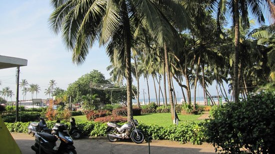 Colva Residency:                   View from Reception