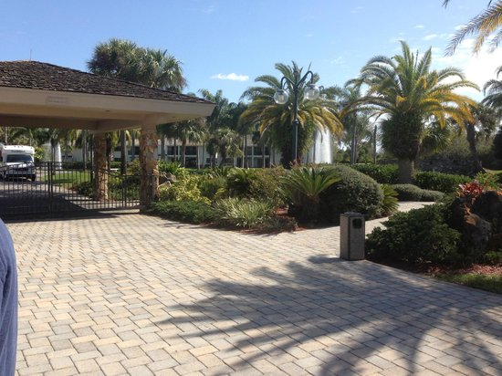 Saddlebrook Resort Tampa :                   nice landscaping