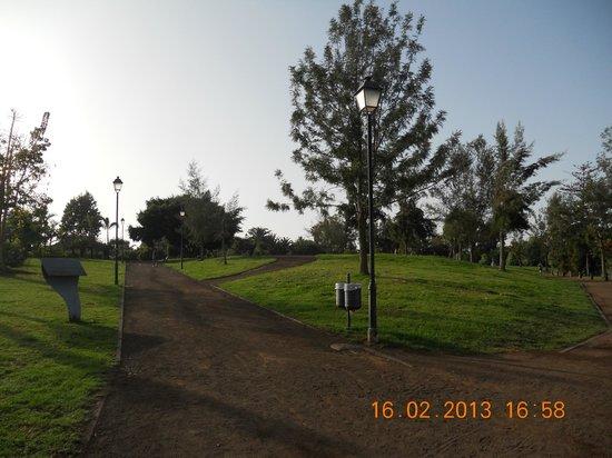 Parque Taoro:                   Beatiful day for running