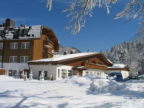 Hotel Bohinj : Hotel - Winter