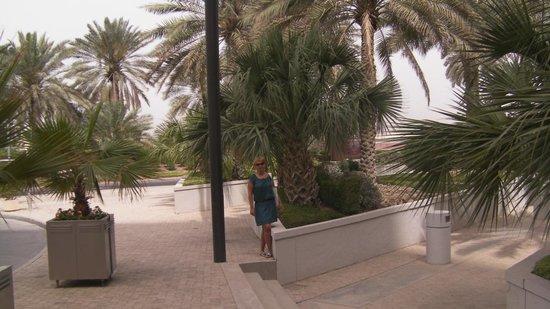 Hyatt Regency Dubai:                   У входа в отель