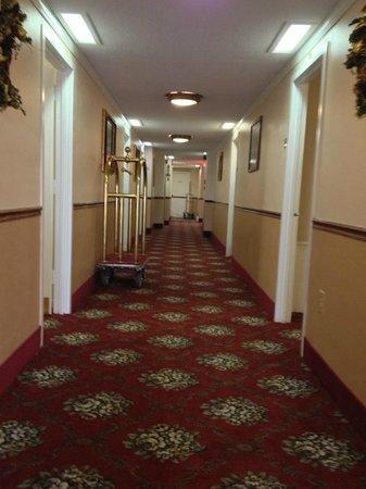 Windsor Park Hotel: Main Hallway 2013