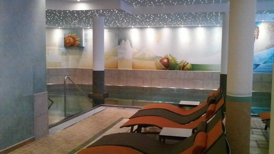 Hotel Bischofsmütze:                   The pool, complete with sparkling ceiling