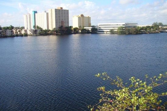 Homewood Suites Miami-Airport / Blue Lagoon:                   Vista de suite com vista para o Lago...