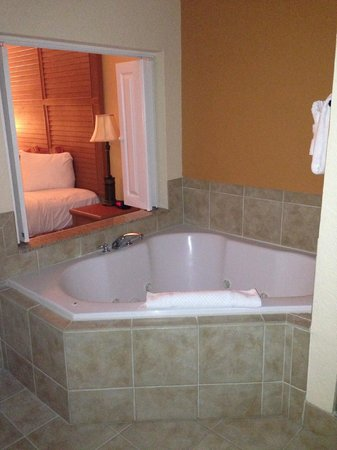 Floridays Resort Orlando:                   Jacuzzi - View from bathroom