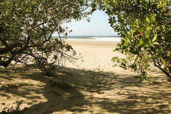 Parque Maritimo el Coco:                   Walkway to beach from Apartamento Cangrejos.