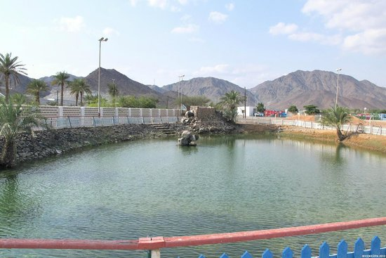 Fujairah, Emiratos Árabes Unidos:                   Spring is inside lake