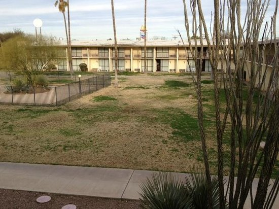 Motel 6 Tucson Airport:                                                                         Grass outside hotel