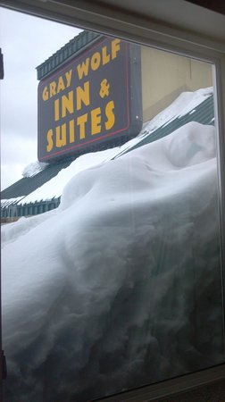 Gray Wolf Inn and Suites:                   Gray Wolf Inn