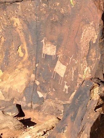 Anasazi Ridge Petroglyphs:                   Baaaaaaaaaaaaaa?
