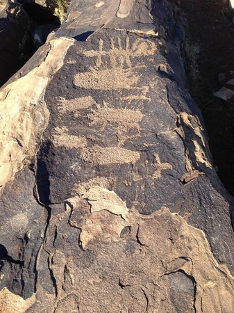 Anasazi Ridge Petroglyphs:                   Everywhere you look