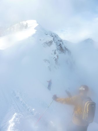 Eagle Pass Heliskiing:                   A view from the alpine.