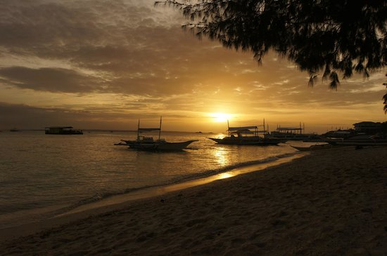 Ocean Vida Beach & Dive Resort: Blick vom Strand auf das Meer