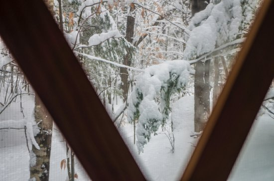Nurture Through Nature Eco-cabin Rentals and Retreats:                   We woke up to beautiful snow on Sunday!