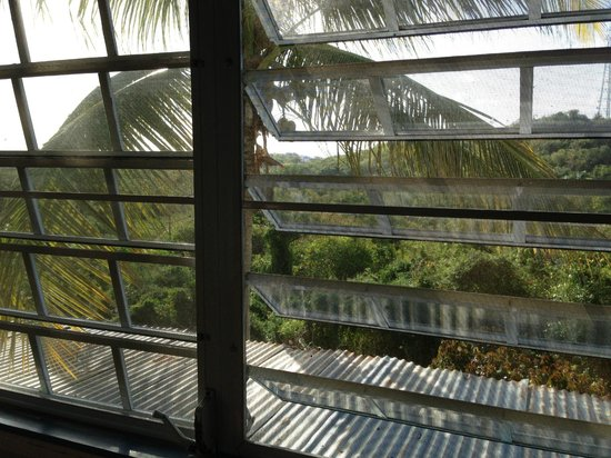 La Finca Vieques:                                                       View from my room
