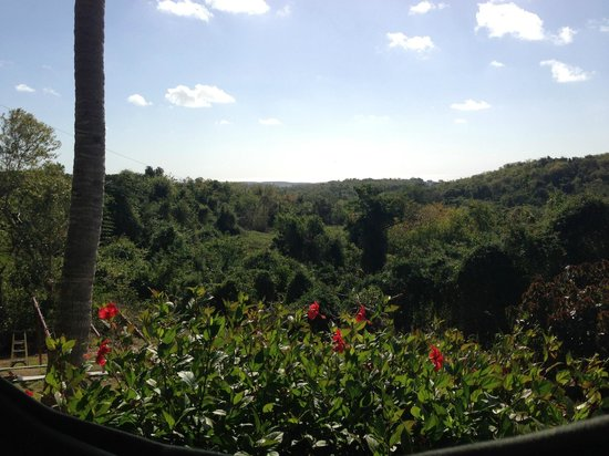 La Finca Vieques:                                                       View from the first floor porch