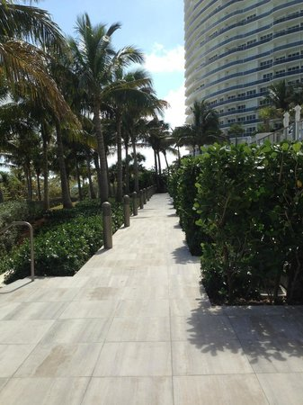 The St. Regis Bal Harbour Resort 사진