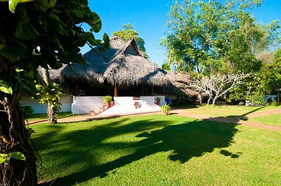 Marari Beach Resort:                   Grounds