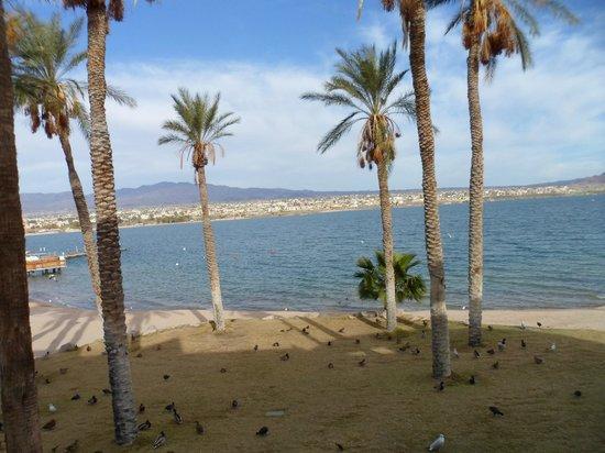 ذا نوتيكال بيتش فرونت ريزورت:                                     view from our balcony                                  