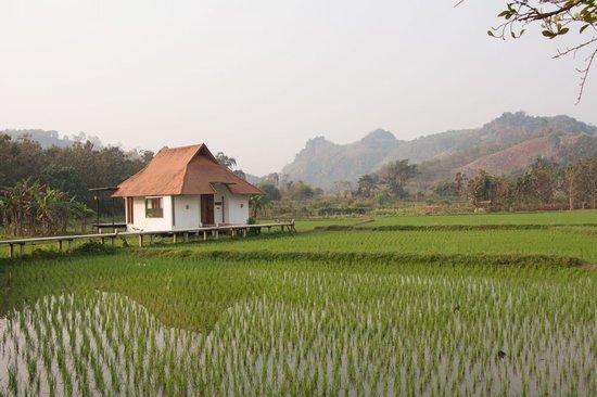 Manee Dheva Resort & Spa:                   Bungalow im Reisfeld