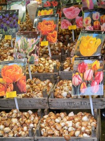 Flower Market / Bloemenmarkt: Flower Market